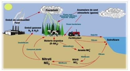 Excesul de nitraţi în apa potabilă, o problemă reală în România | fabricadestaruri.ro